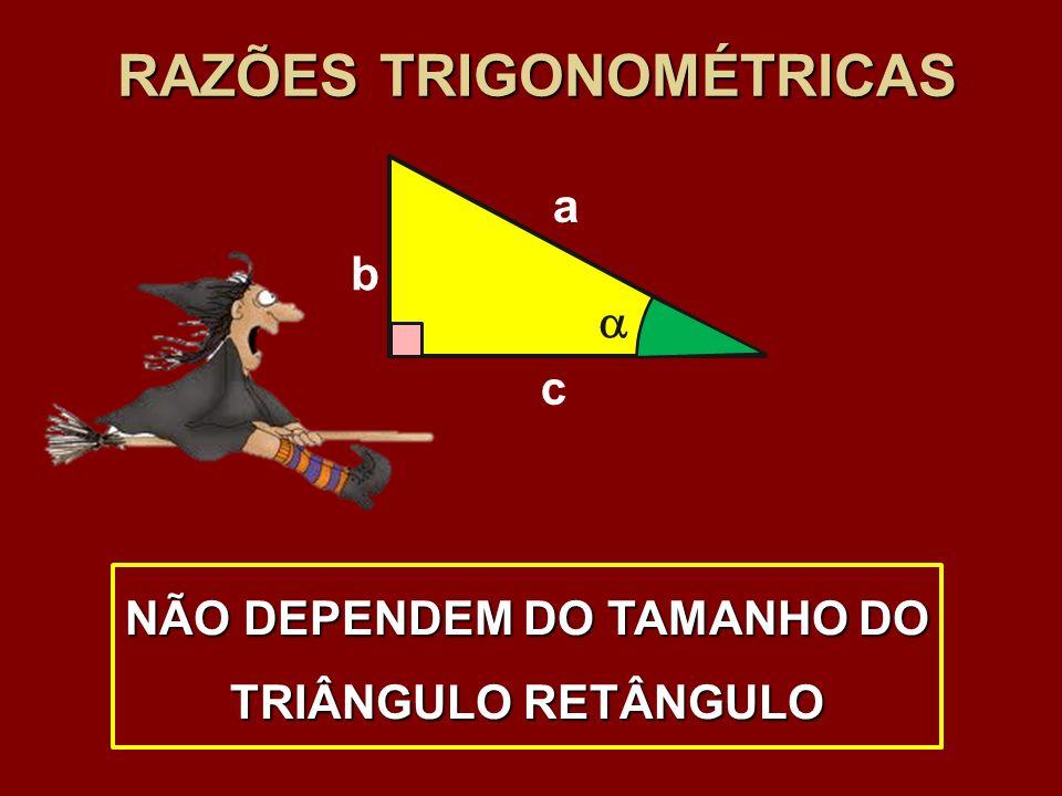 RAZÕES TRIGONOMÉTRICAS b c a NÃO DEPENDEM DO TAMANHO DO TRIÂNGULO RETÂNGULO