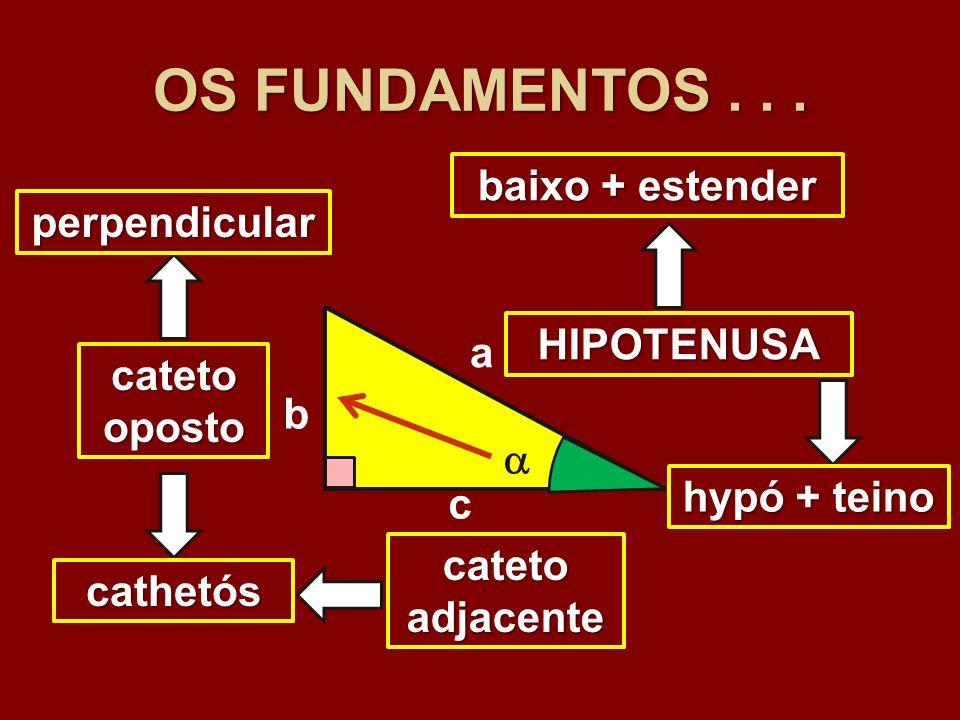 OS FUNDAMENTOS... c b a catetooposto catetoadjacente HIPOTENUSA cathetós perpendicular baixo + estender hypó + teino