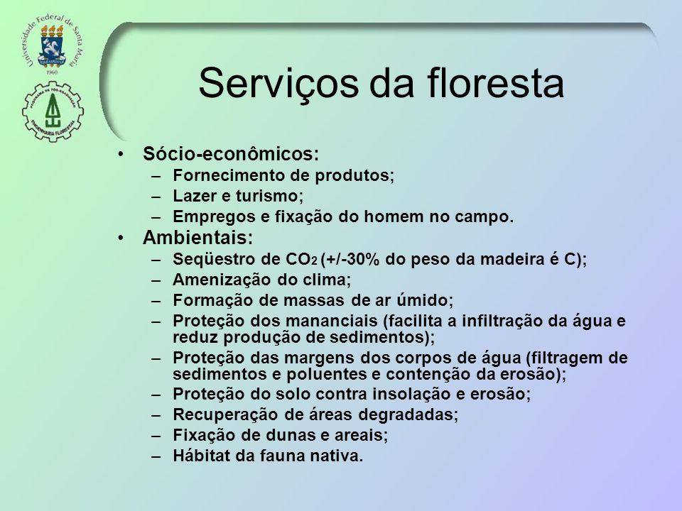 Serviços da floresta Sócio-econômicos: –Fornecimento de produtos; –Lazer e turismo; –Empregos e fixação do homem no campo. Ambientais: –Seqüestro de C