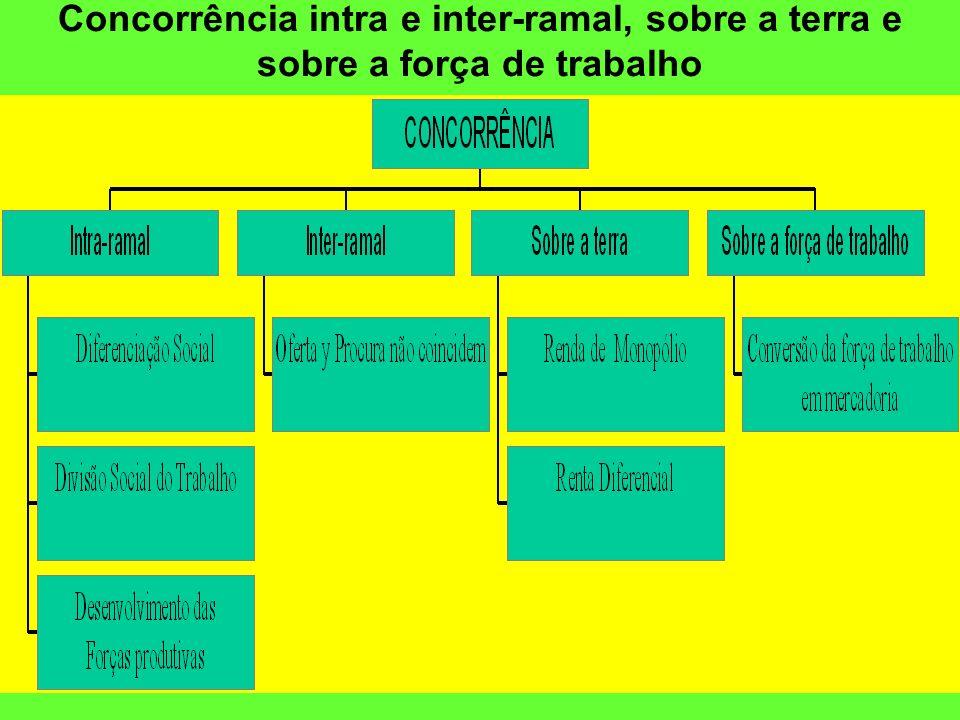 Concorrência intra e inter-ramal, sobre a terra e sobre a força de trabalho