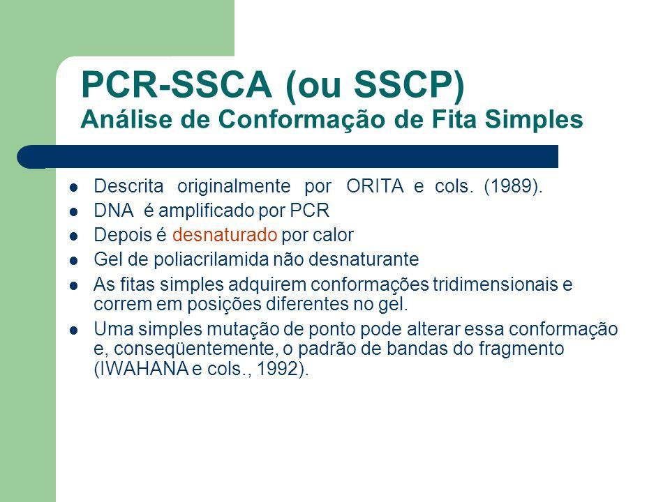 PCR-SSCA (ou SSCP) Análise de Conformação de Fita Simples Descrita originalmente por ORITA e cols. (1989). DNA é amplificado por PCR Depois é desnatur