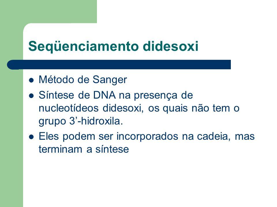 Seqüenciamento didesoxi Método de Sanger Síntese de DNA na presença de nucleotídeos didesoxi, os quais não tem o grupo 3-hidroxila. Eles podem ser inc