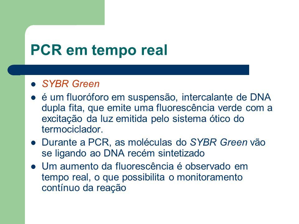 SYBR Green é um fluoróforo em suspensão, intercalante de DNA dupla fita, que emite uma fluorescência verde com a excitação da luz emitida pelo sistema