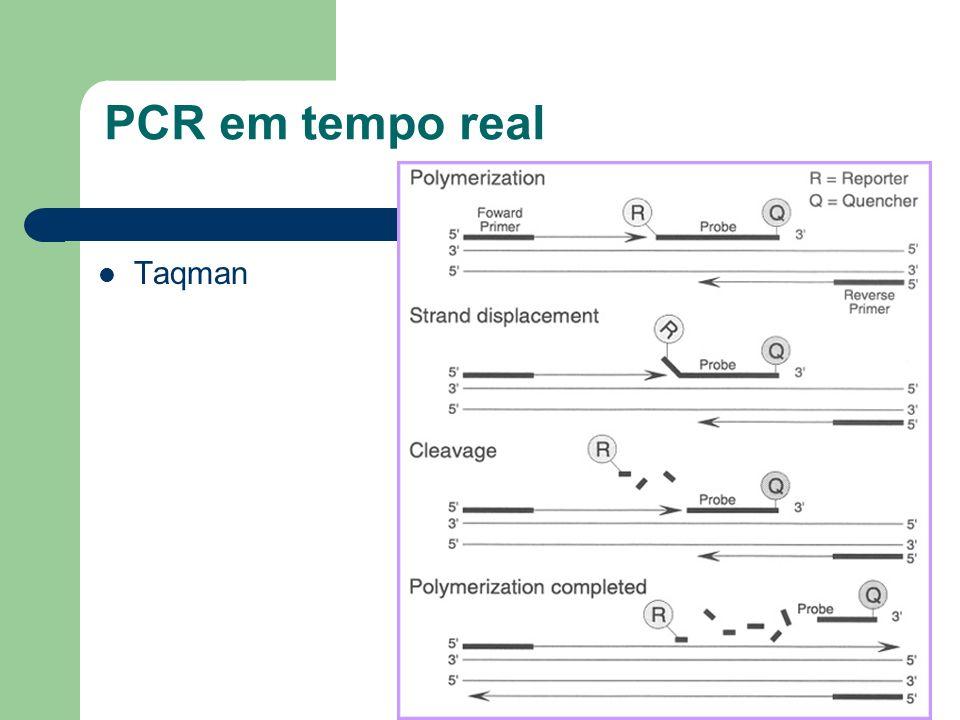 PCR em tempo real Taqman