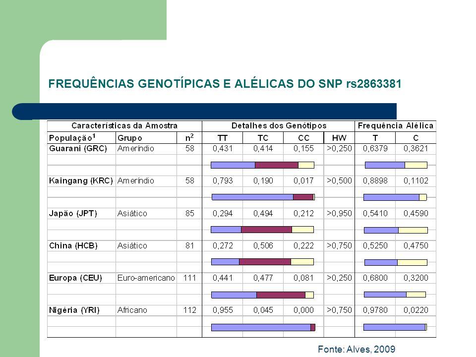 FREQUÊNCIAS GENOTÍPICAS E ALÉLICAS DO SNP rs2863381 Fonte: Alves, 2009