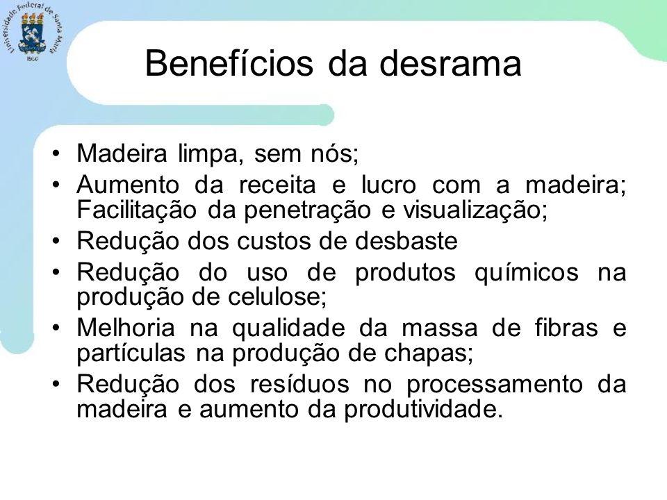 Benefícios da desrama Madeira limpa, sem nós; Aumento da receita e lucro com a madeira; Facilitação da penetração e visualização; Redução dos custos d