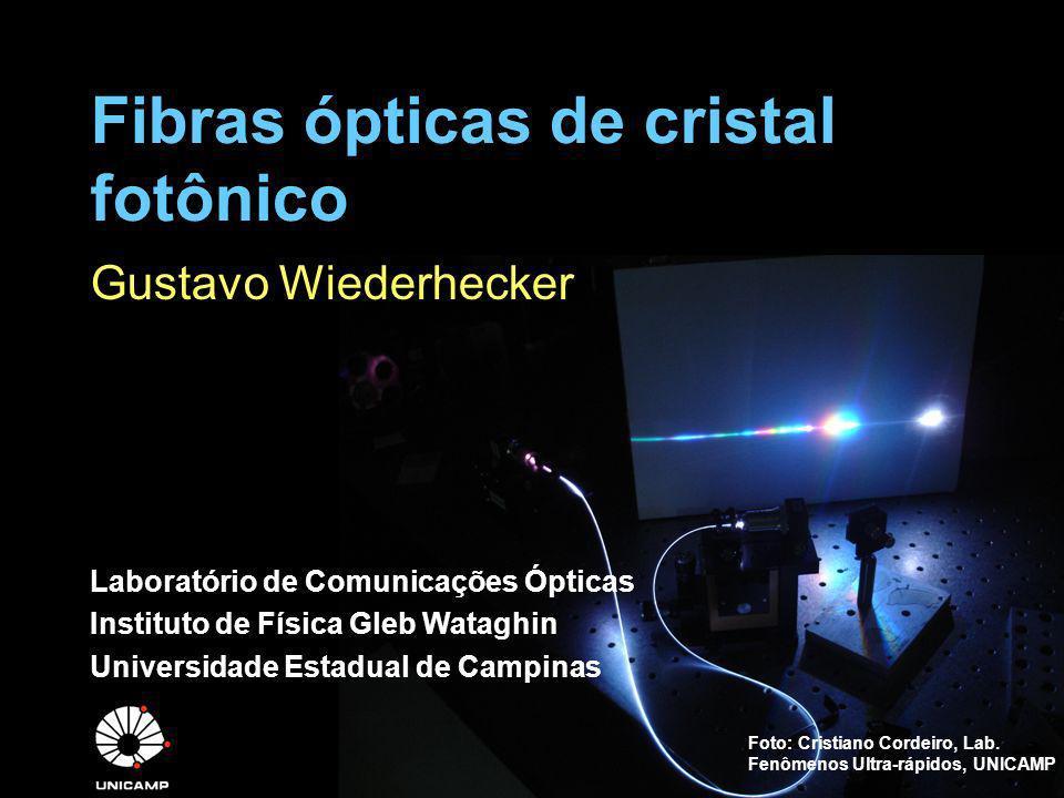 Status no mundo PCF podem ser adquiridas comercialmente –Crystal Fibre http://www.crystal-fibre.com/http://www.crystal-fibre.com/ Brasil –Unicamp Lab.