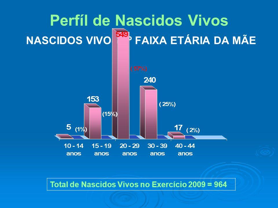 Perfíl de Nascidos Vivos NASCIDOS VIVOS 2º FAIXA ETÁRIA DA MÃE Total de Nascidos Vivos no Exercício 2009 = 964