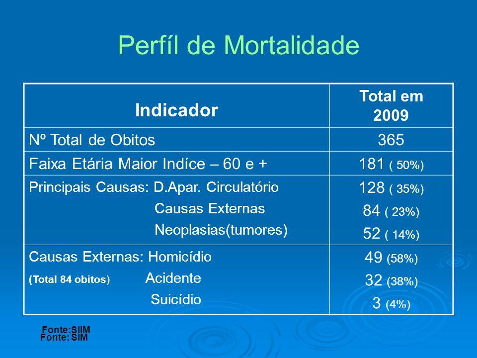Indicador Total em 2009 Nº Total de Obitos365 Faixa Etária Maior Indíce – 60 e +181 ( 50%) Principais Causas: D.Apar. Circulatório Causas Externas Neo