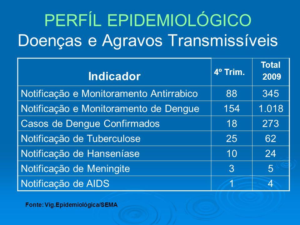 PERFÍL EPIDEMIOLÓGICO Doenças e Agravos Transmissíveis Indicador 4º Trim. Total 2009 Notificação e Monitoramento Antirrabico88345 Notificação e Monito