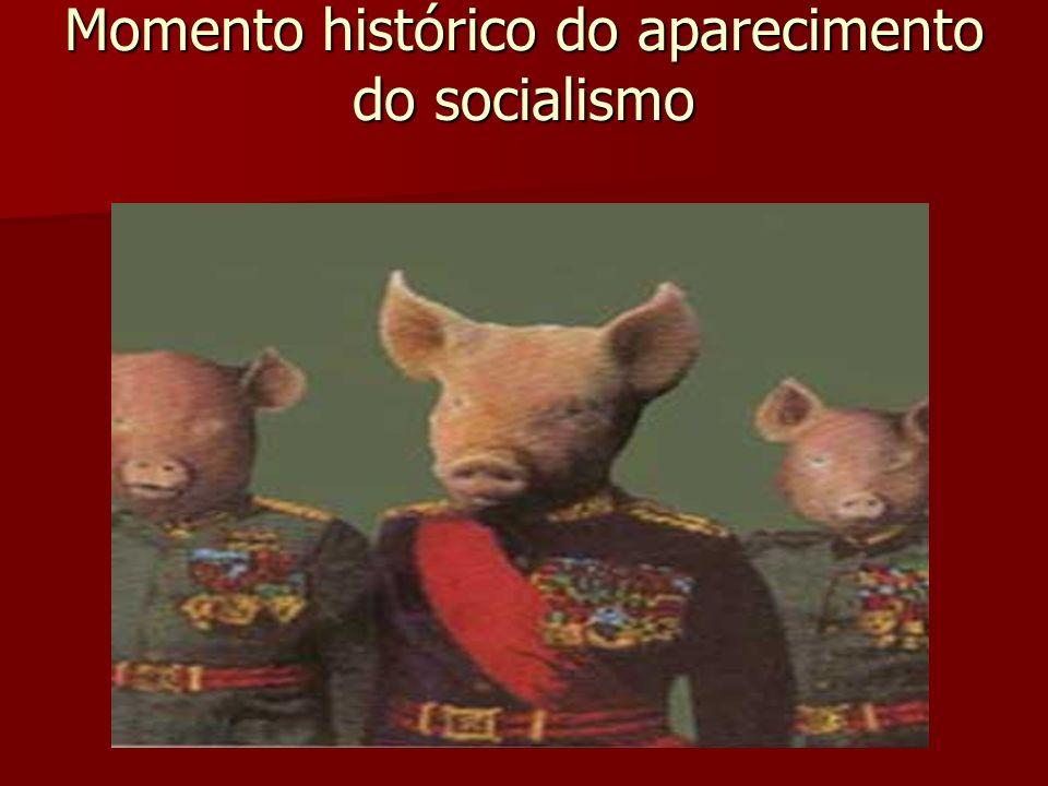 A revolução industrial iniciada na Grã- Bretanha, no século XVIII, estabeleceu um tipo de sociedade dividida em duas classes sobre as quais se sustentava o sistema capitalista: a burguesia (empresariado), e o proletariado (trabalhadores assalariados).