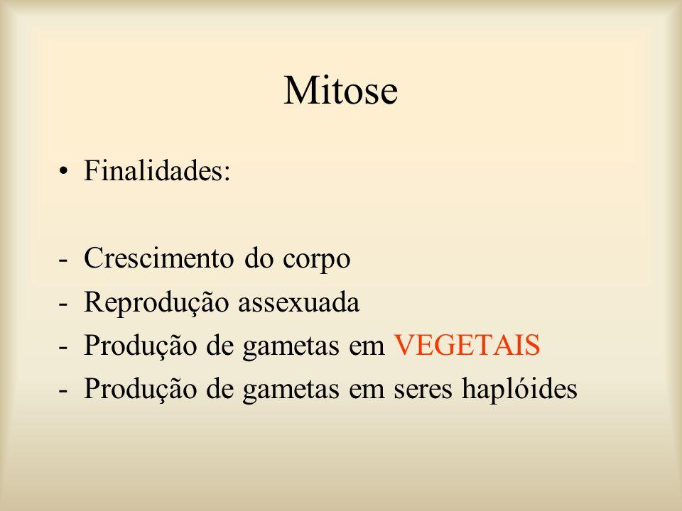 Finalidades: -Crescimento do corpo -Reprodução assexuada -Produção de gametas em VEGETAIS -Produção de gametas em seres haplóides Mitose
