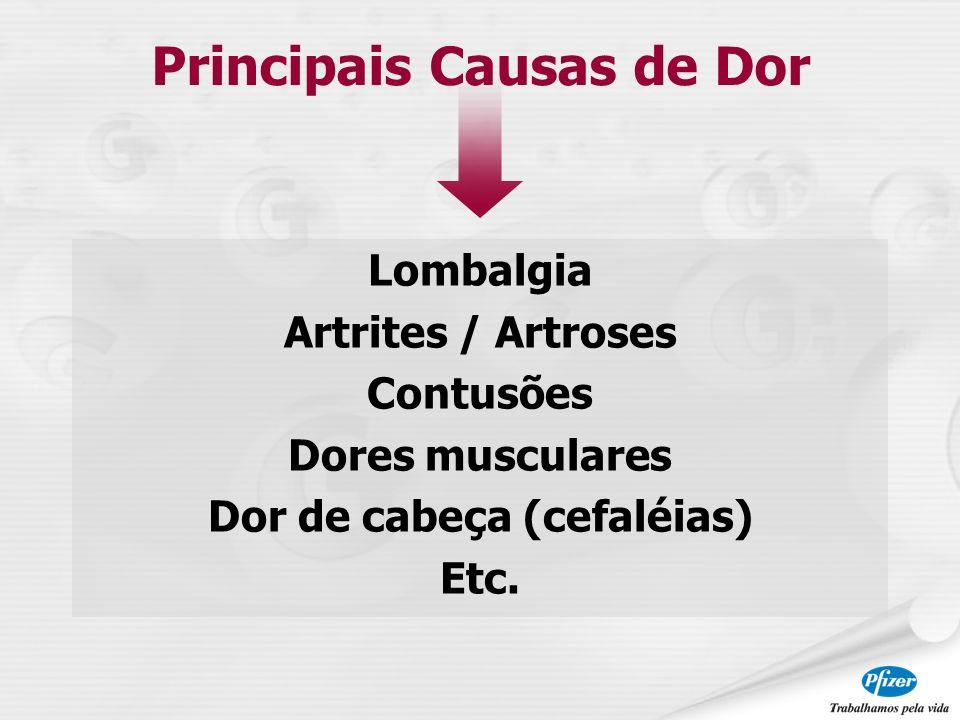 Lombalgia Artrites / Artroses Contusões Dores musculares Dor de cabeça (cefaléias) Etc. Principais Causas de Dor