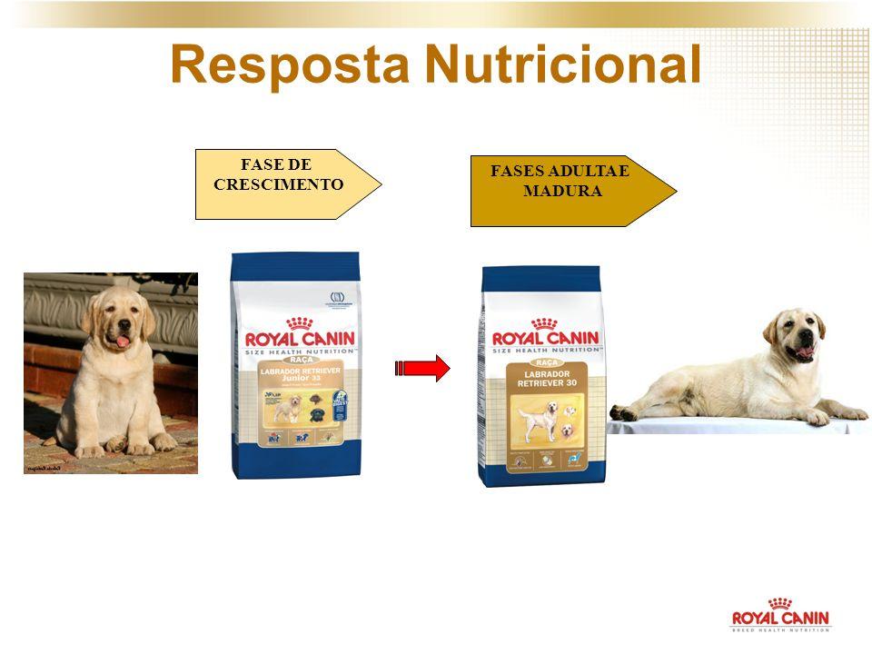 FASE DE CRESCIMENTO FASES ADULTA E MADURA Resposta Nutricional