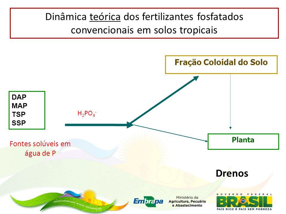 Dinâmica teórica dos fertilizantes fosfatados convencionais em solos tropicais DAP MAP TSP SSP H 2 PO 4 - Fração Coloidal do Solo Planta Fontes solúve