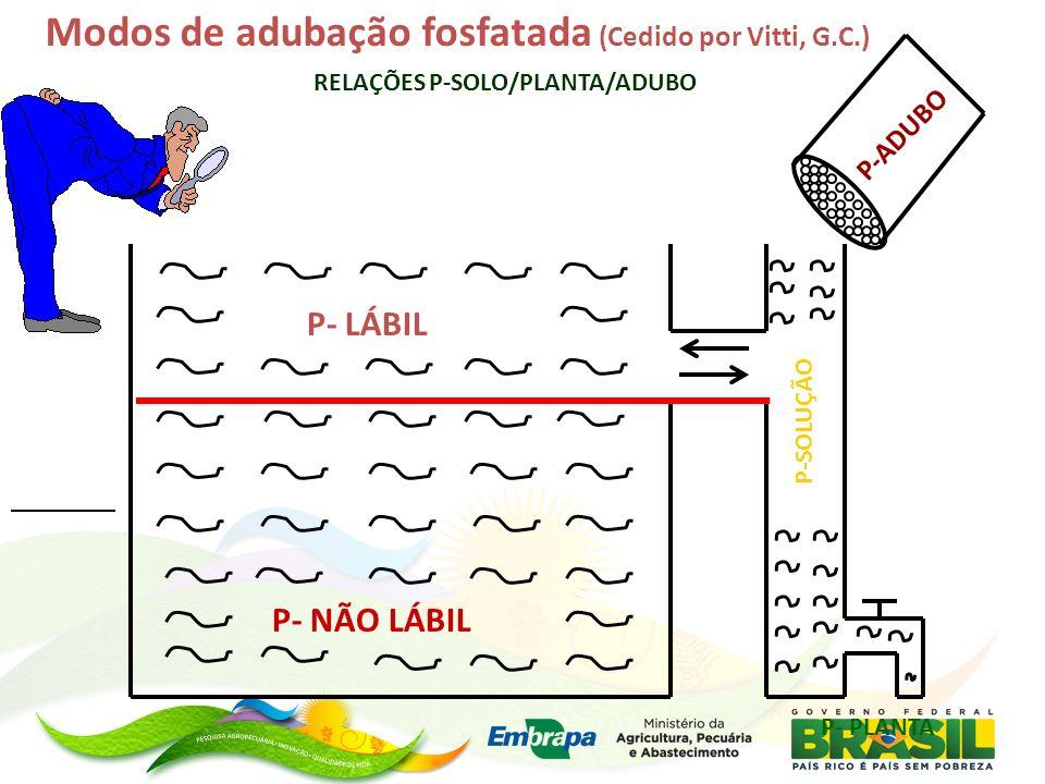 Modos de adubação fosfatada (Cedido por Vitti, G.C.) P- LÁBIL P- NÃO LÁBIL P-SOLUÇÃO P- PLANTA P-ADUBO RELAÇÕES P-SOLO/PLANTA/ADUBO