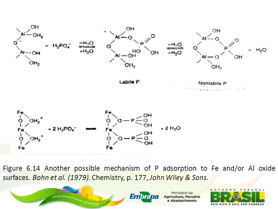 Figure 6.14 Another possible mechanism of P adsorption to Fe and/or Al oxide surfaces. Bohn et al. (1979). Chemistry, p. 177, John Wiley & Sons.