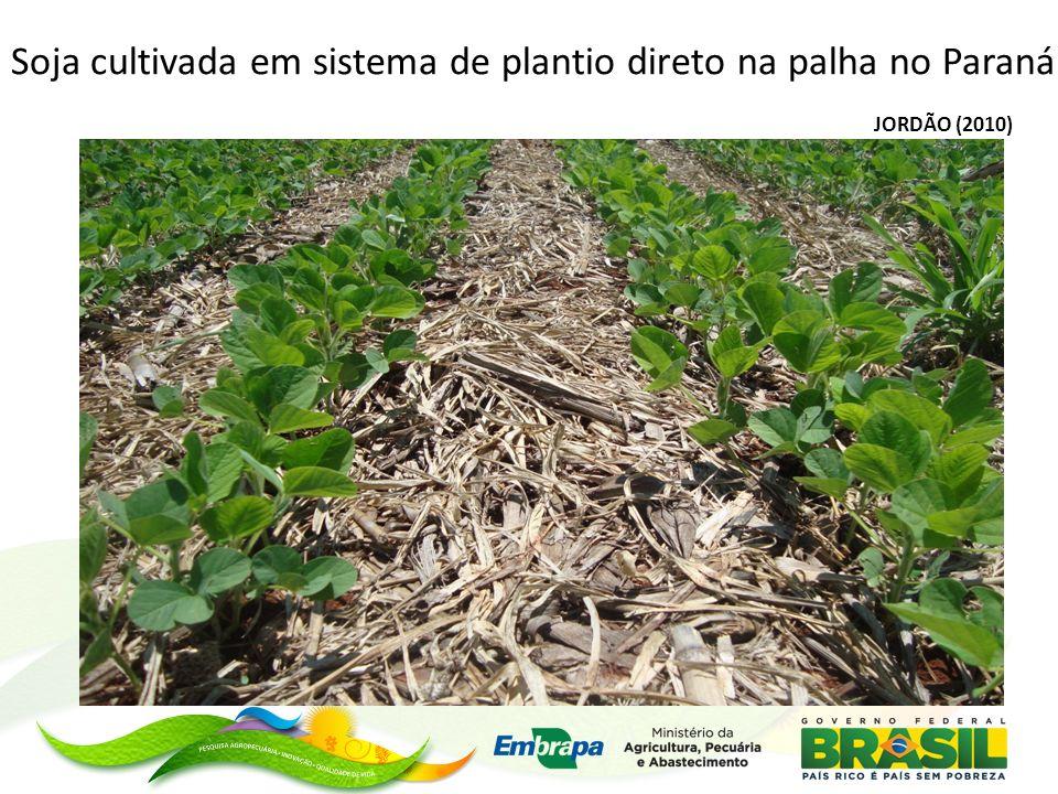 JORDÃO (2010) Soja cultivada em sistema de plantio direto na palha no Paraná