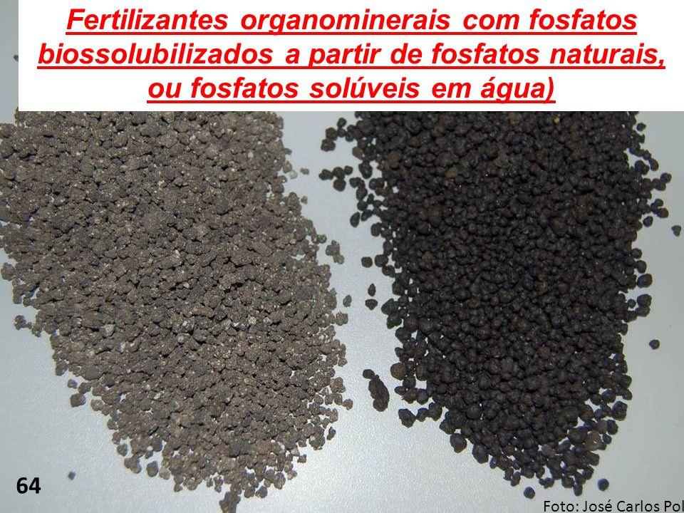Fertilizantes organominerais com fosfatos biossolubilizados a partir de fosfatos naturais, ou fosfatos solúveis em água) 64 Foto: José Carlos Polidoro