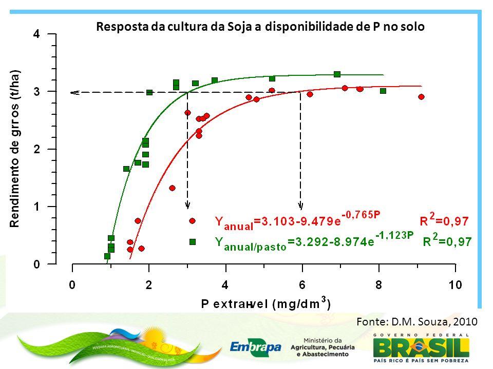 -Fósforo é o nutriente que determina os fluxos de energia química nas plantas e, principalmente por isso, sua deficiência causa sérias limitações na produção vegetal.