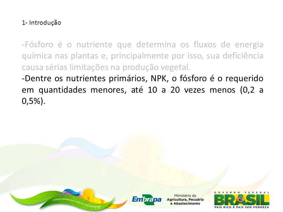 Rede de experimentos para aumento da eficiência agronômica do fósforo na agricultura Brasileira com o uso de fosfatos naturais Experimentos que combinam a fosfatagem com fosfatos naturais e a adubação das culturas com fosfatos solúveis em água (fertilizantes fosfatados SSP, SFT, MAP, etc) Áreas com limitações na disponibilidade de fósforo (sobretudo áreas novas e de reforma)