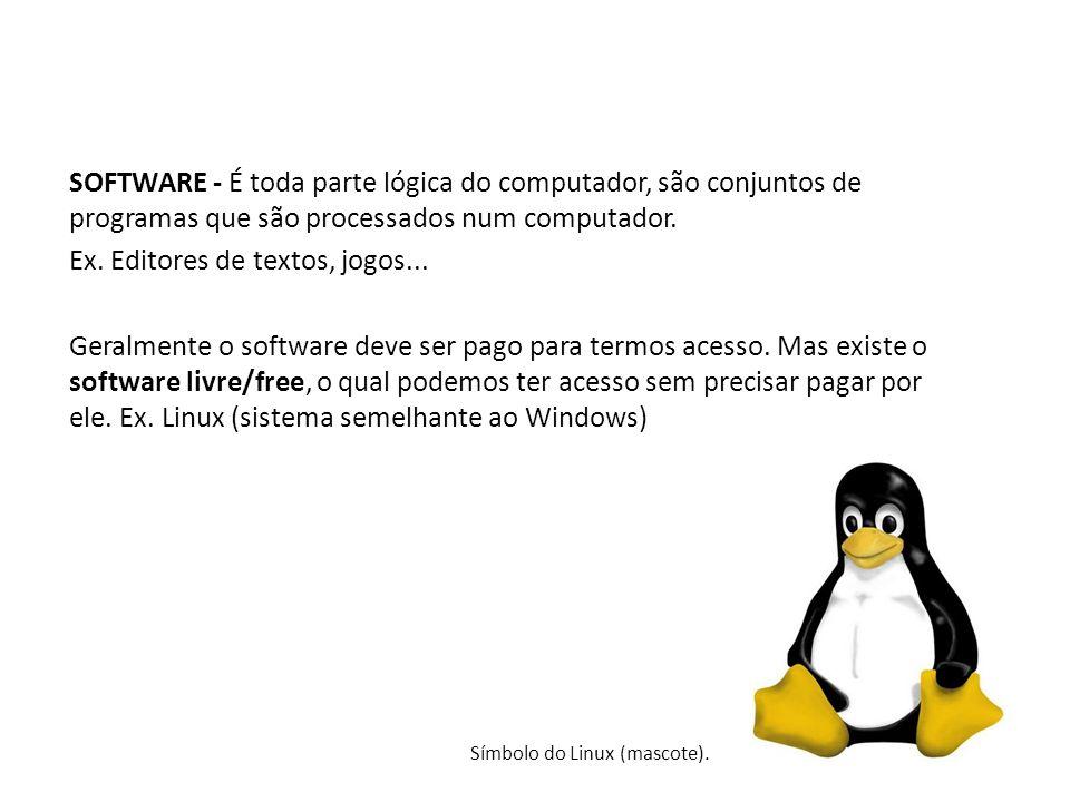 SOFTWARE - É toda parte lógica do computador, são conjuntos de programas que são processados num computador. Ex. Editores de textos, jogos... Geralmen