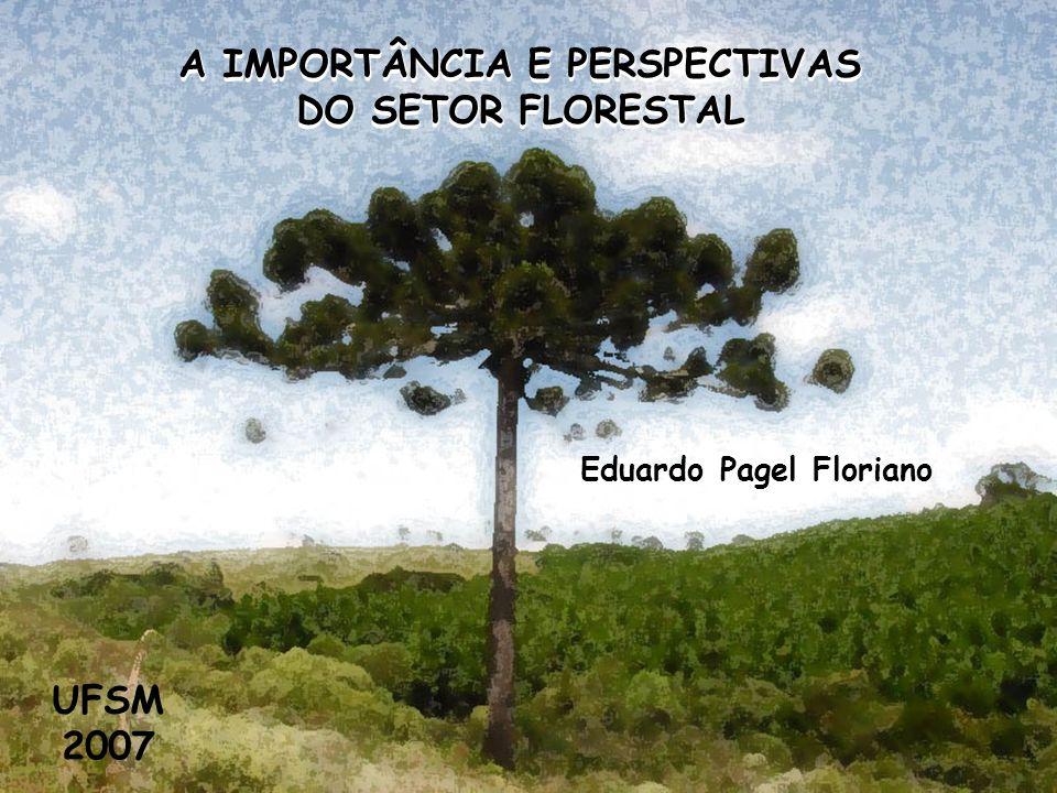 A IMPORTÂNCIA E PERSPECTIVAS DO SETOR FLORESTAL Eduardo Pagel Floriano UFSM 2007 A IMPORTÂNCIA E PERSPECTIVAS DO SETOR FLORESTAL