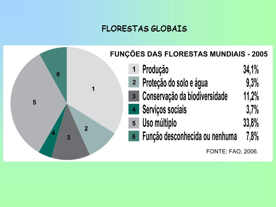 BENCHMARKING COM FINLÂNDIA - 2002 Florestas Nativas (10 6 Ha) 539 20,8 Florestas Plantadas (10 6 Ha) 5,0 5,5 Contribuição ao PIB 4% 9% Exportações (10 6 U$) 4,1 12,2 Balança Comercial (10 6 U$) 3,3 10,8 Produtividade Florestal (m³/ha/ano) 30 / 45 4 / 6 Consumo Madeira Ind.
