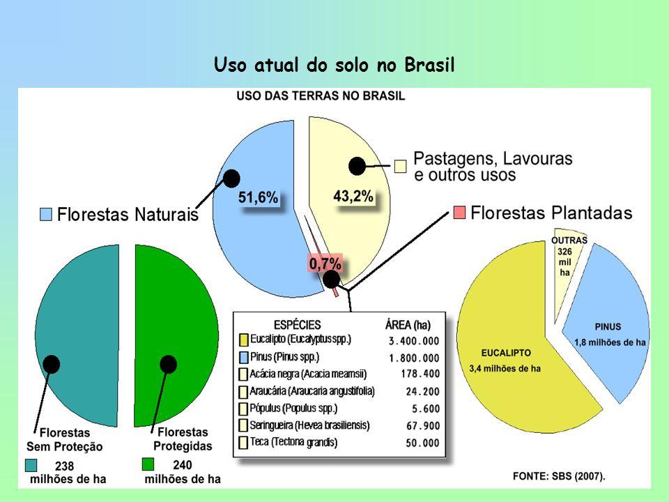 SETOR FLORESTAL BRASILEIRO (2002) DADOS SÓCIO-ECONÔMICOS PIB Florestal = US$ 21 bilhões (4% do total) –Celulose e papel: US$ 7,5 bilhões –Siderurgia a carvão vegetal: US$ 4,2 bilhões –Madeira e móveis: US$ 9,3 bilhões Exportações = US$ 5,4 bilhões (10% do total) Impostos Recolhidos = US$ 2 bilhões Consumo de madeira (Nativas + Plantadas) = 300 milhões m 3 /ano Empregos Diretos + Indiretos = 2 milhões (total) = 500 mil (plantações) ÁREAS FLORESTAIS Florestas nativas: 530 milhões ha Unidades de Conservação Federal: 43,5 milhões ha Plantações Pinus + Eucalyptus: 4,8 milhões ha -> 6,126 milhões ha (ABRAF 2008) AUMENTO DE 27,6% EM 6 anos Plantio anual: 200 mil ha Fonte: Leite (2003).