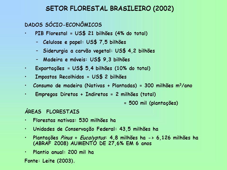 SETOR FLORESTAL BRASILEIRO (2002) DADOS SÓCIO-ECONÔMICOS PIB Florestal = US$ 21 bilhões (4% do total) –Celulose e papel: US$ 7,5 bilhões –Siderurgia a