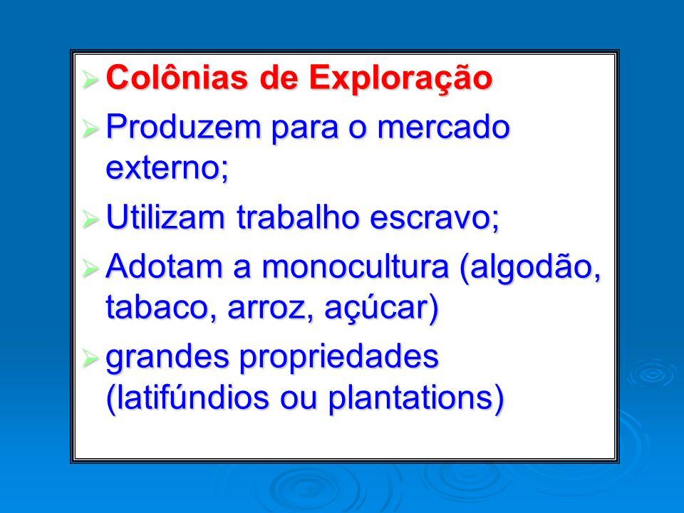 Colônias de Exploração Colônias de Exploração Produzem para o mercado externo; Produzem para o mercado externo; Utilizam trabalho escravo; Utilizam tr