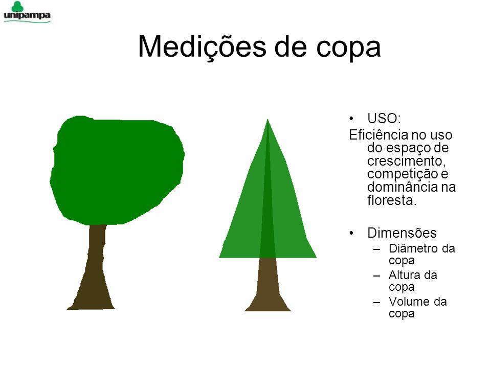 Medições de copa USO: Eficiência no uso do espaço de crescimento, competição e dominância na floresta. Dimensões –Diâmetro da copa –Altura da copa –Vo