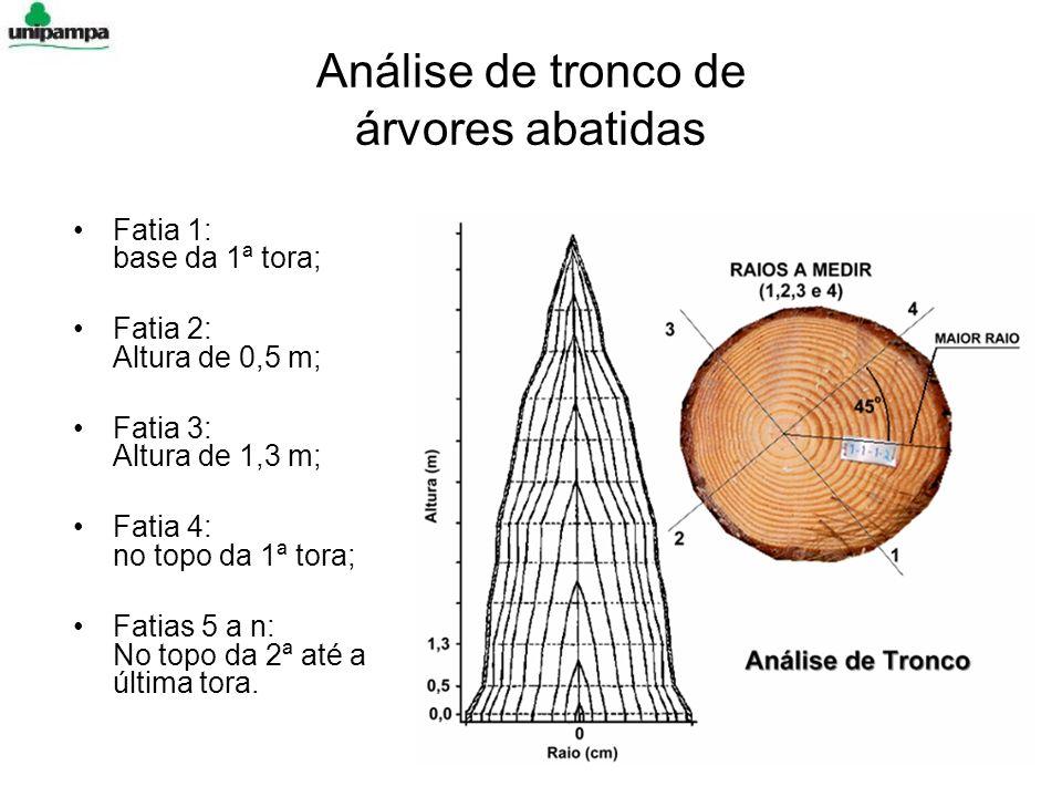 Fatia 1: base da 1ª tora; Fatia 2: Altura de 0,5 m; Fatia 3: Altura de 1,3 m; Fatia 4: no topo da 1ª tora; Fatias 5 a n: No topo da 2ª até a última tora.