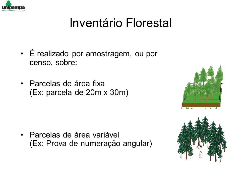 Inventário Florestal É realizado por amostragem, ou por censo, sobre: Parcelas de área fixa (Ex: parcela de 20m x 30m) Parcelas de área variável (Ex:
