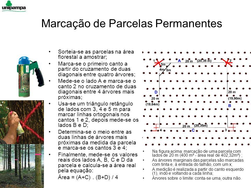 Marcação de Parcelas Permanentes Sorteia-se as parcelas na área florestal a amostrar; Marca-se o primeiro canto a partir do cruzamento de duas diagonais entre quatro árvores; Mede-se o lado A e marca-se o canto 2 no cruzamento de duas diagonais entre 4 árvores mais próximas; Usa-se um triângulo retângulo de lados com 3, 4 e 5 m para marcar linhas ortogonais nos cantos 1 e 2, depois mede-se os lados B e D; Determina-se o meio entre as duas linhas de árvores mais próximas da medida da parcela e marca-se os cantos 3 e 4; Finalmente, mede-se os valores reais dos lados A, B, C e D da parcela e calcula-se a área real pela equação: Área = (A+C).