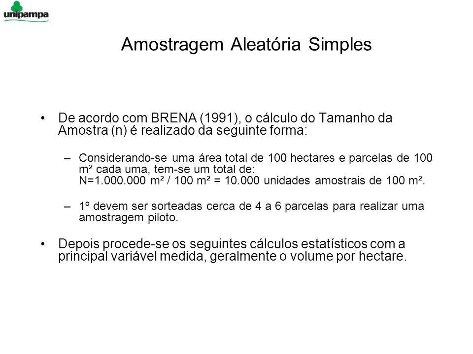 Amostragem Aleatória Simples De acordo com BRENA (1991), o cálculo do Tamanho da Amostra (n) é realizado da seguinte forma: –Considerando-se uma área total de 100 hectares e parcelas de 100 m² cada uma, tem-se um total de: N=1.000.000 m² / 100 m² = 10.000 unidades amostrais de 100 m².