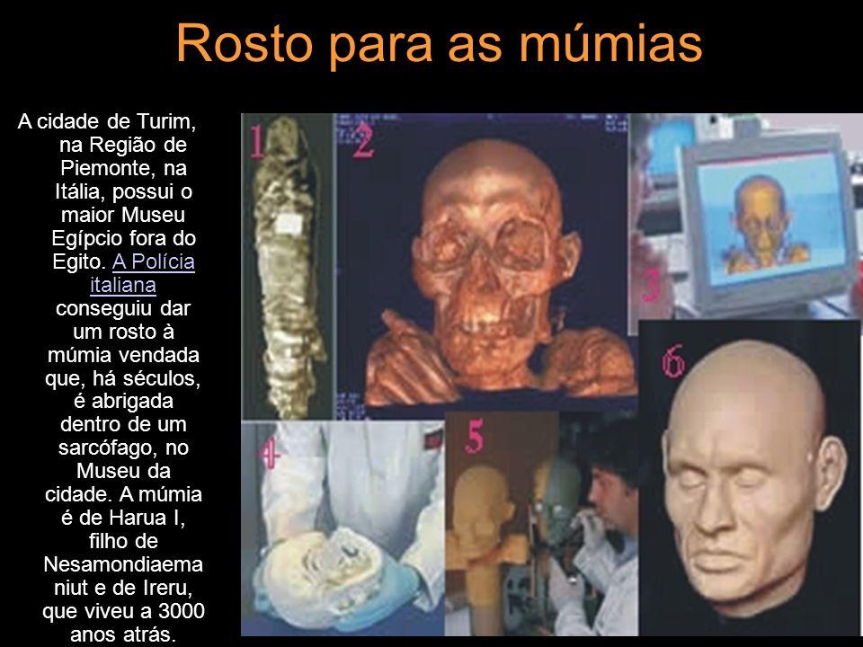 Rosto para as múmias A cidade de Turim, na Região de Piemonte, na Itália, possui o maior Museu Egípcio fora do Egito. A Polícia italiana conseguiu dar