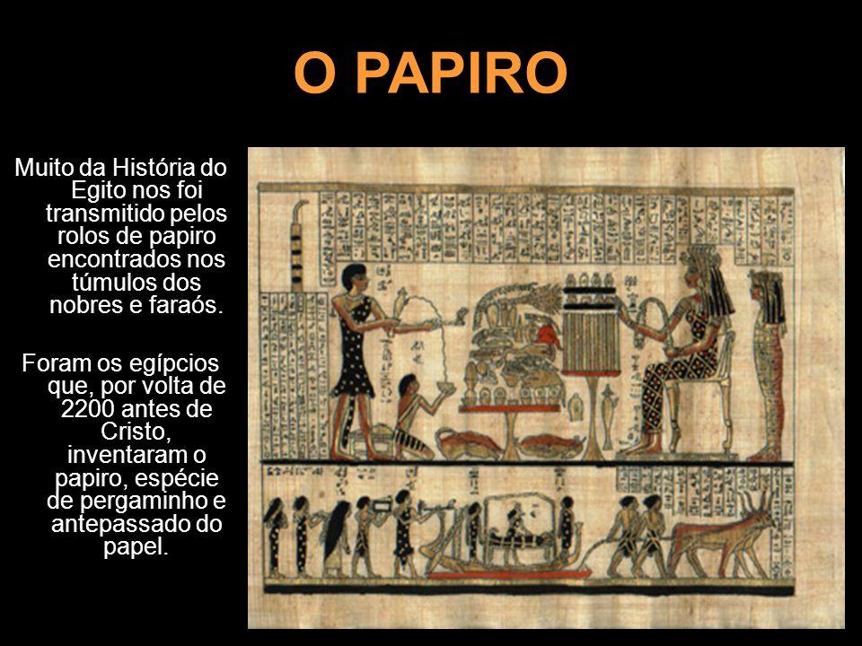O PAPIRO Muito da História do Egito nos foi transmitido pelos rolos de papiro encontrados nos túmulos dos nobres e faraós. Foram os egípcios que, por