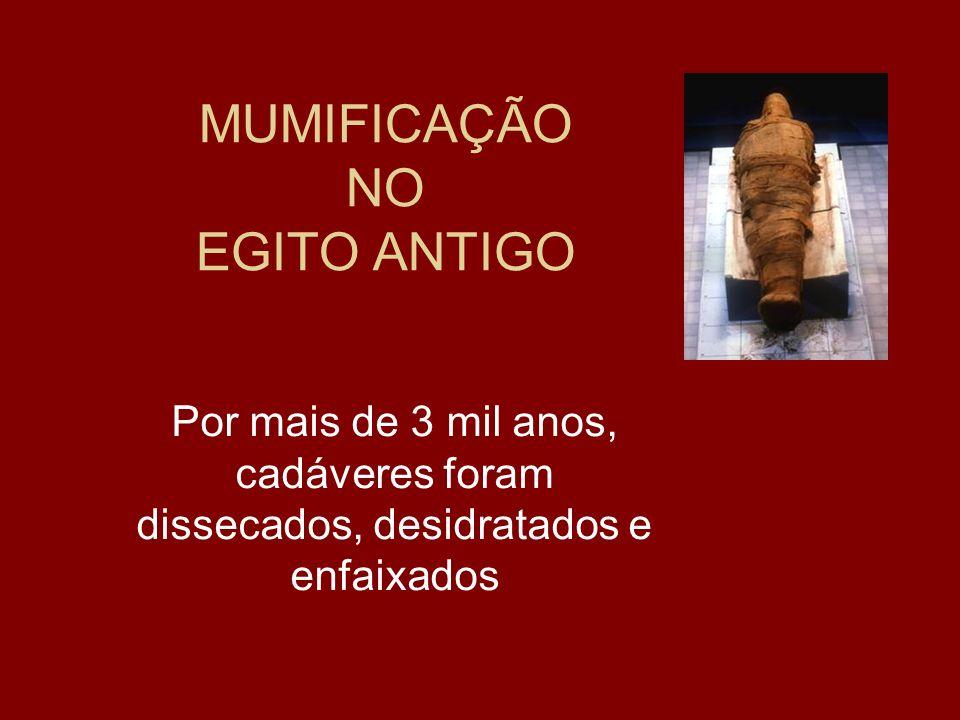MUMIFICAÇÃO NO EGITO ANTIGO Por mais de 3 mil anos, cadáveres foram dissecados, desidratados e enfaixados