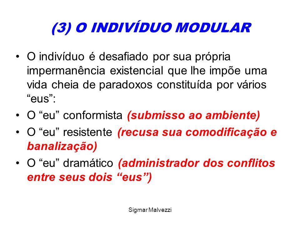Sigmar Malvezzi (3) O INDIVÍDUO MODULAR O indivíduo é desafiado por sua própria impermanência existencial que lhe impõe uma vida cheia de paradoxos co