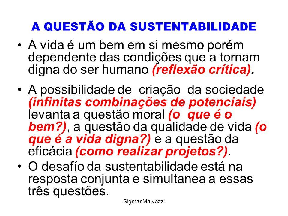 Sigmar Malvezzi A QUESTÃO DA SUSTENTABILIDADE A vida é um bem em si mesmo porém dependente das condições que a tornam digna do ser humano (reflexão cr