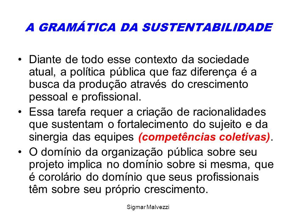 Sigmar Malvezzi A GRAMÁTICA DA SUSTENTABILIDADE Diante de todo esse contexto da sociedade atual, a política pública que faz diferença é a busca da pro