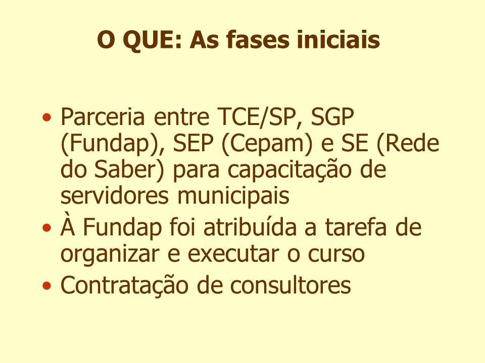 Parceria entre TCE/SP, SGP (Fundap), SEP (Cepam) e SE (Rede do Saber) para capacitação de servidores municipais À Fundap foi atribuída a tarefa de org