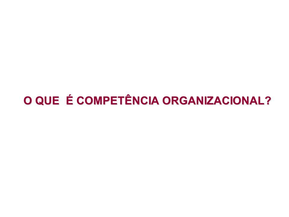 O QUE É COMPETÊNCIA ORGANIZACIONAL?