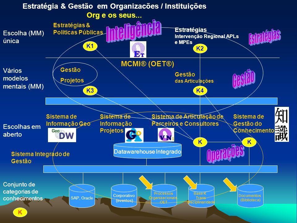 Estratégia & Gestão em Organizacões / Instituições Org e os seus...