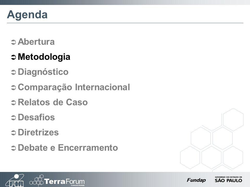 Fundap Agenda Abertura Metodologia Diagnóstico Comparação Internacional Relatos de Caso Desafios Diretrizes Debate e Encerramento