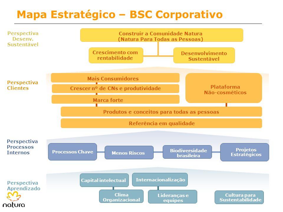 Mapa Estratégico – BSC Corporativo Menos Riscos Processos Chave Projetos Estratégicos Perspectiva Processos Internos Perspectiva Desenv. Sustentável P