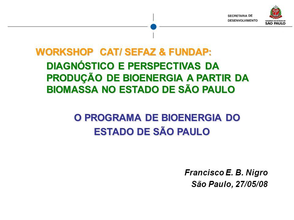 WORKSHOP CAT/ SEFAZ & FUNDAP: DIAGNÓSTICO E PERSPECTIVAS DA PRODUÇÃO DE BIOENERGIA A PARTIR DA BIOMASSA NO ESTADO DE SÃO PAULO O PROGRAMA DE BIOENERGI