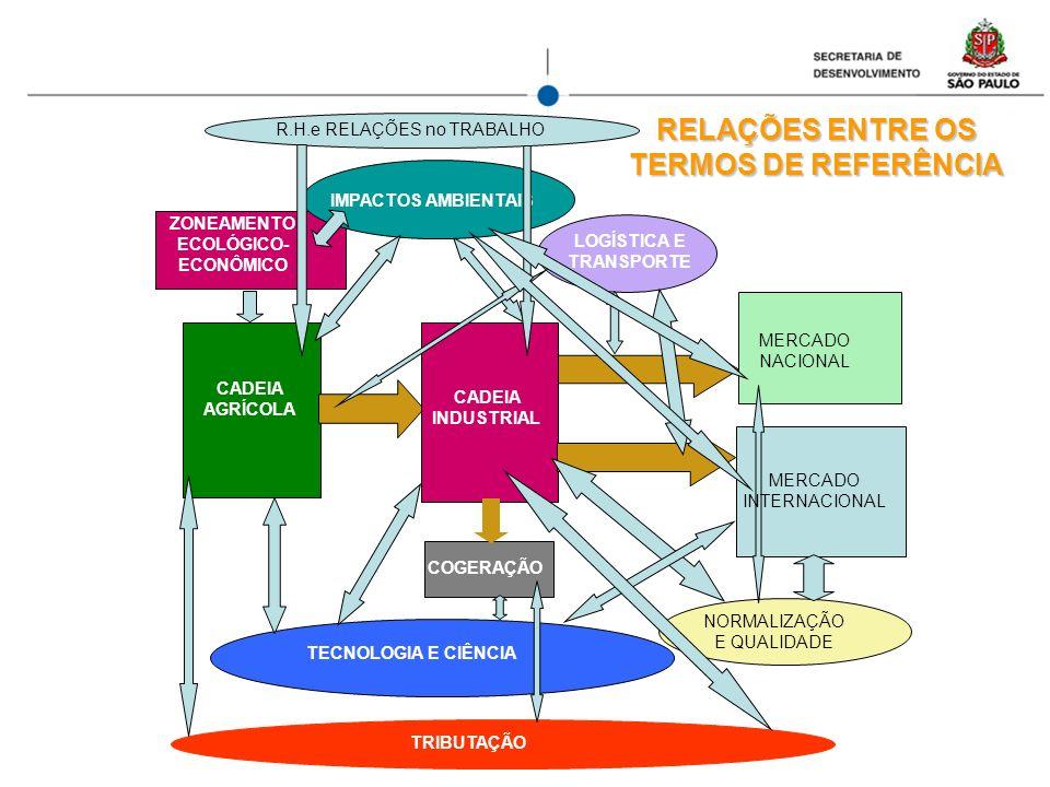 RELAÇÕES ENTRE OS TERMOS DE REFERÊNCIA CADEIA AGRÍCOLA CADEIA INDUSTRIAL MERCADO NACIONAL COGERAÇÃO TECNOLOGIA E CIÊNCIA ZONEAMENTO ECOLÓGICO- ECONÔMI