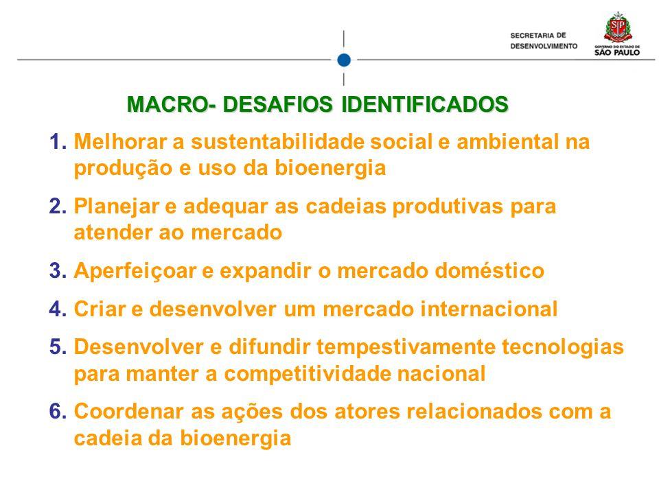 MACRO- DESAFIOS IDENTIFICADOS 1.Melhorar a sustentabilidade social e ambiental na produção e uso da bioenergia 2.Planejar e adequar as cadeias produti